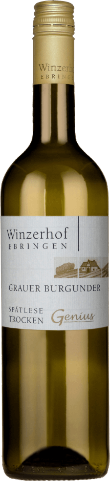 Grauer Burgunder Genius 2018