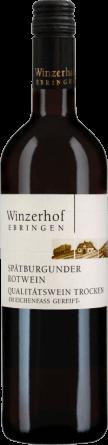 Spätburgunder Rotwein trocken – Im Eichenfass gereift – 2018