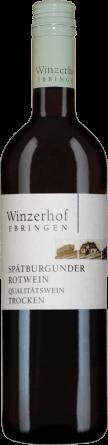 Spätburgunder Rotwein trocken 2018