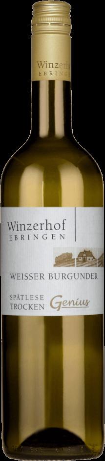 Weißer Burgunder Genius 2017