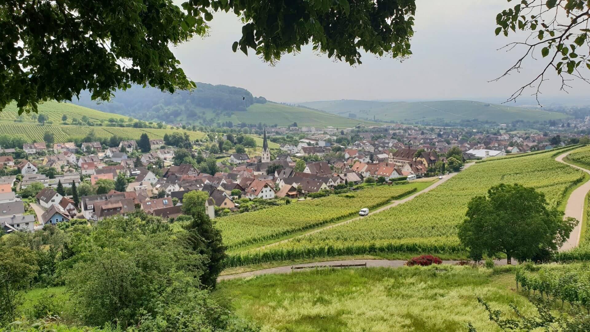 Zentrum des idyllischen, badischen Winzerdorfes ist der Winzerhof Ebringen
